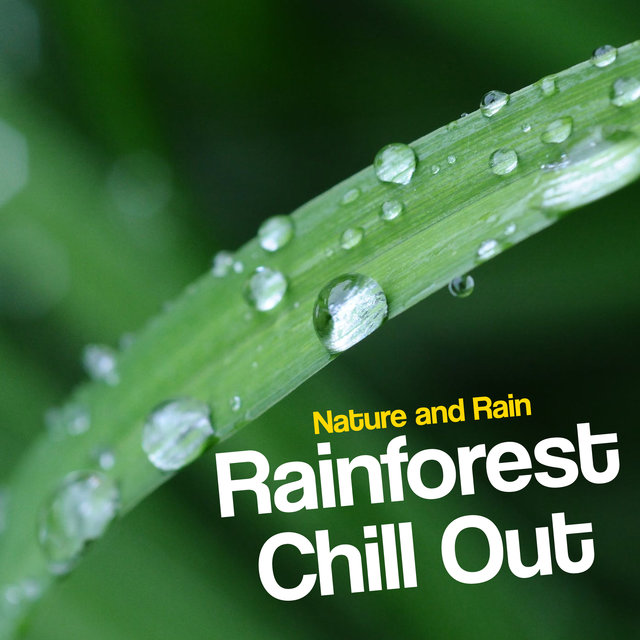 Rainforest Chill Out