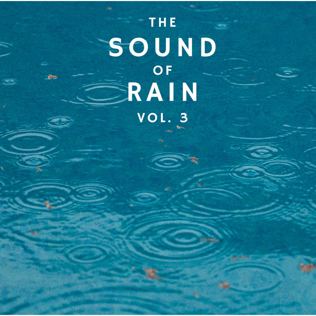 The Sound of Rain Vol. 3, Library of Thunder and Lightning Storms