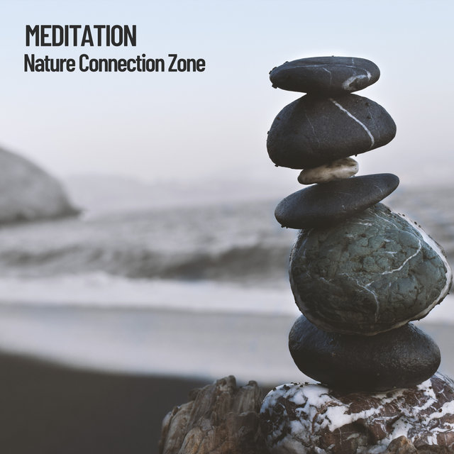 Meditation: Nature Connection Zone