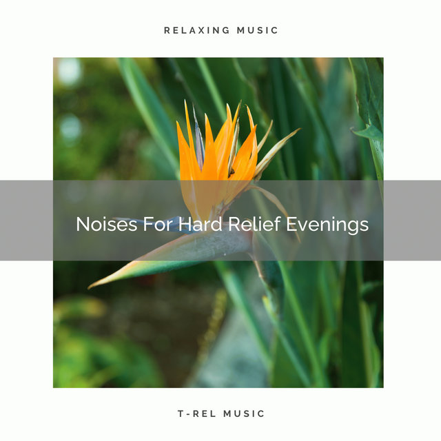 Noises For Hard Relief Evenings