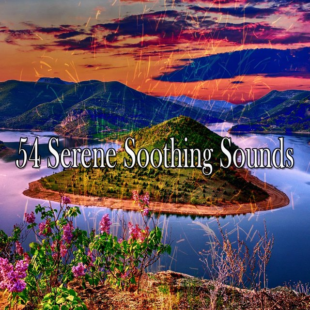 54 Serene Soothing Sounds