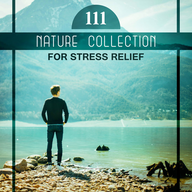 111 Nature Collection for Stress Relief