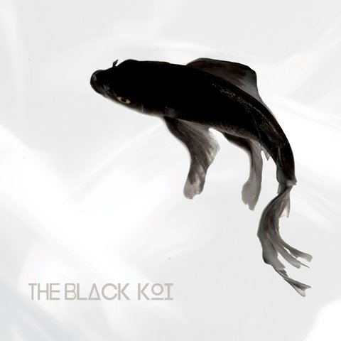 The Black Koi