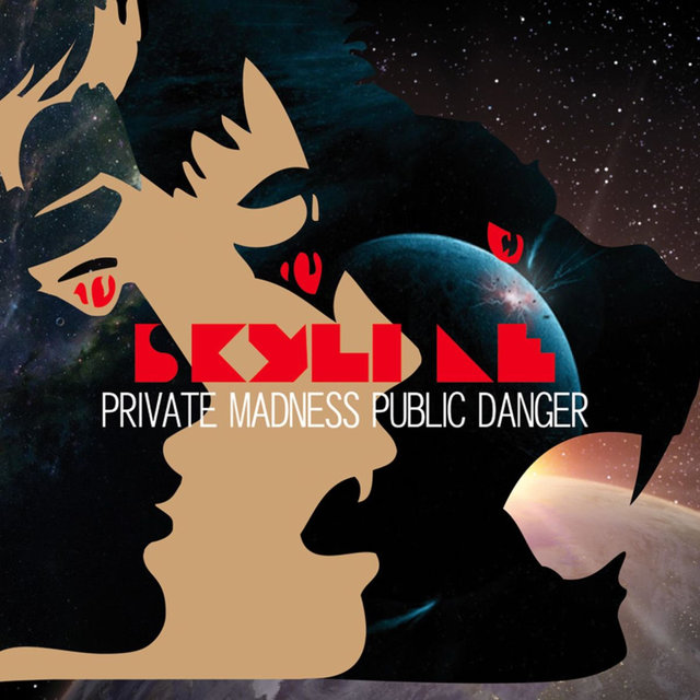 Private Madness Public Danger