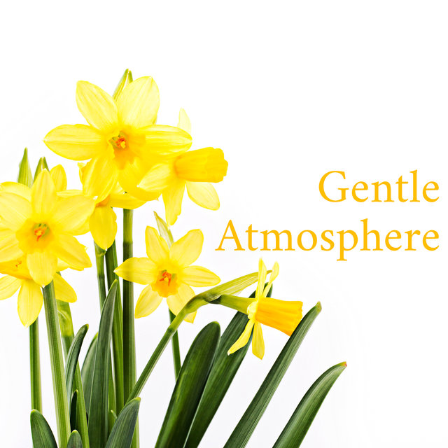 Gentle Atmosphere (Very Soft & Easy Jazz Music)