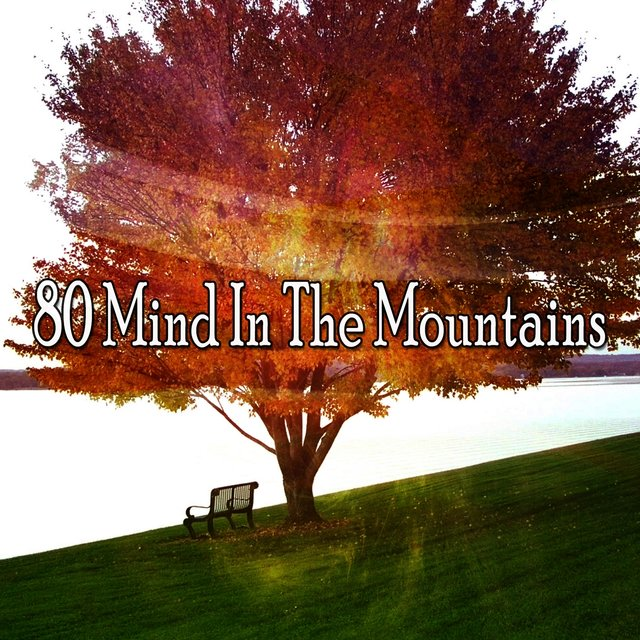 80 Mind in the Mountains