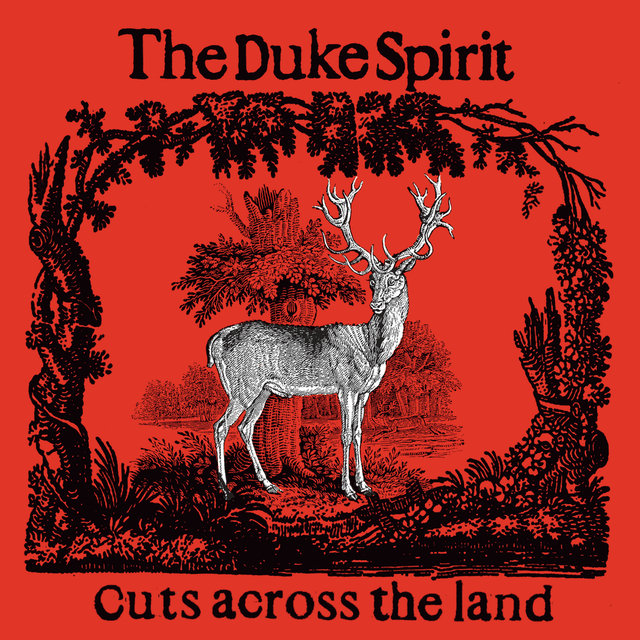 Cuts Across The Land