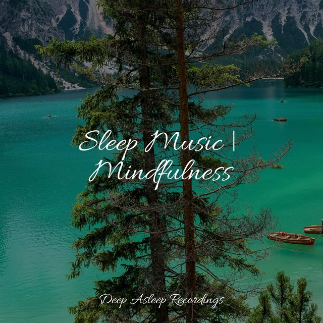 Sleep Music | Mindfulness