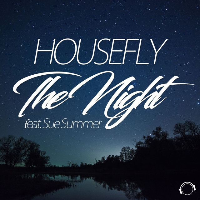 The Night (feat. Sue Summer)