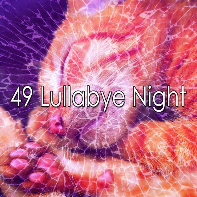 49 Lullabye Night