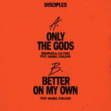 Only The Gods (feat. Anabel Englund)