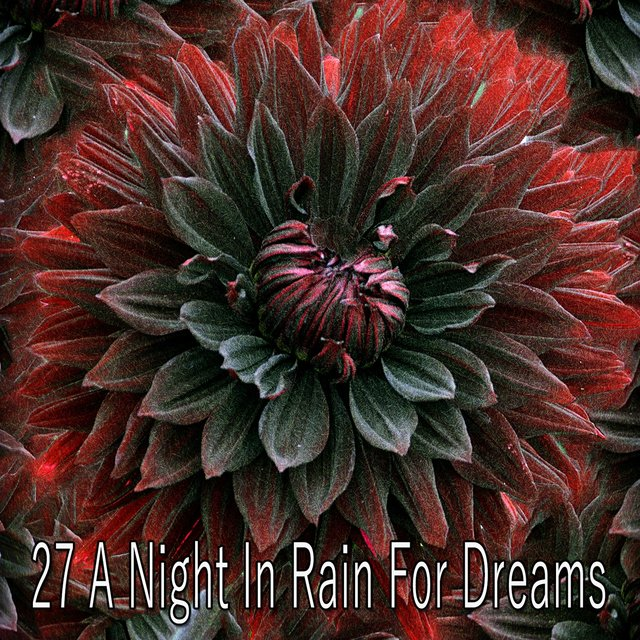 27 A Night in Rain for Dreams