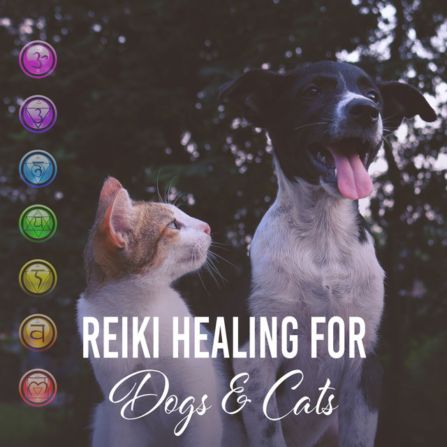 Reiki Healing for Dogs & Cats: Soothing Energy, Relaxing Music for Pets