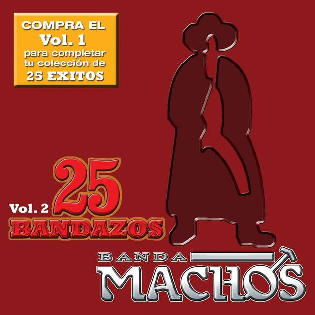 25 Bandazos de Machos (Vol. 2) (USA)