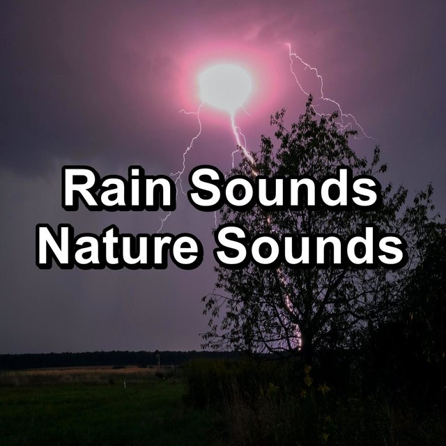 Rain Sounds Nature Sounds