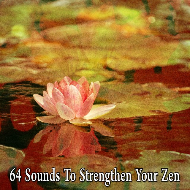 64 Sounds to Strengthen Your Zen