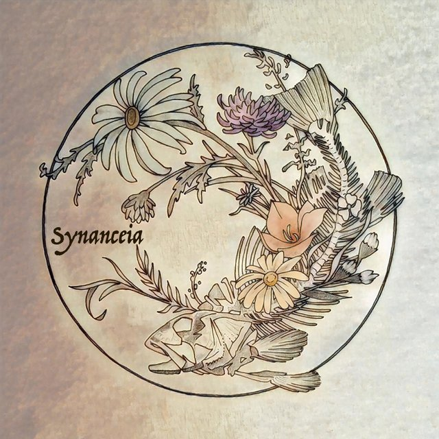 Synanceia