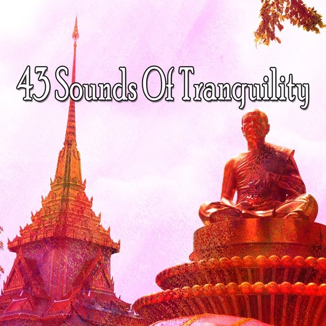 43 Sounds of Tranquility