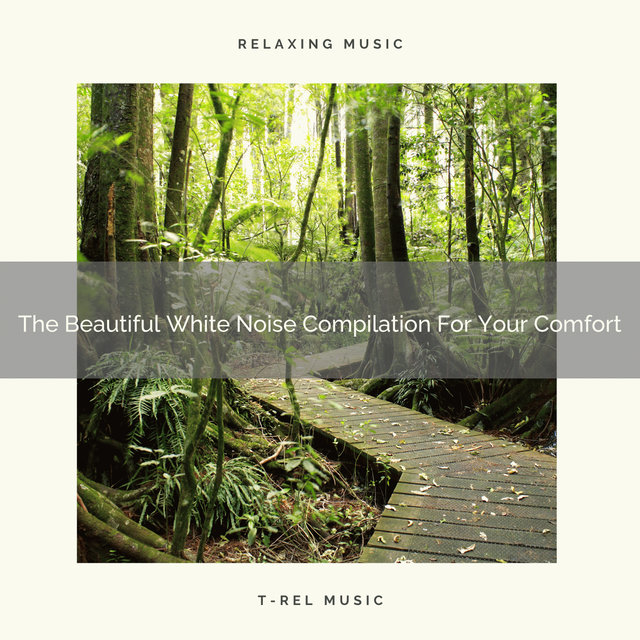 The Beautiful White Noise Compilation For Your Comfort