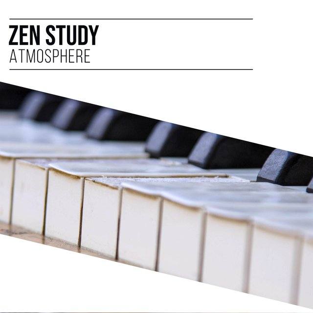 Zen Study Therapy Atmosphere