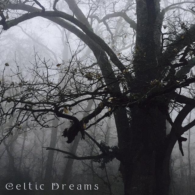 Celtic Dreams - Unique Collection of Irish New Age Music Perfect for Listening at Bedtime, Nature Sounds, Good Night, Insomnia Relief