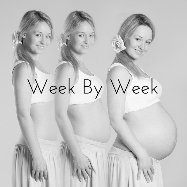 Week By Week: Pregnancy Music for Expectant Mother