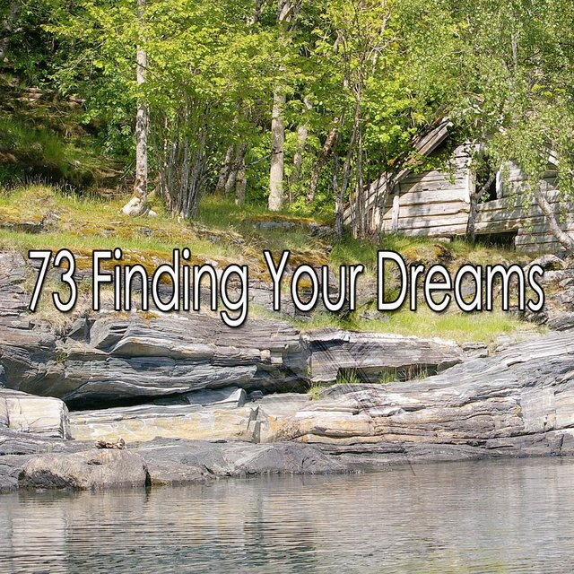 73 Finding Your Dreams