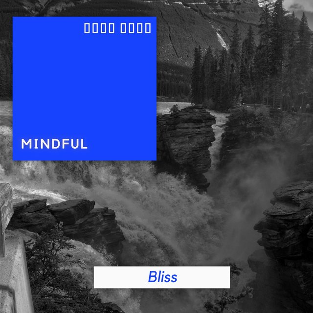 # 1 Album: Mindful Bliss