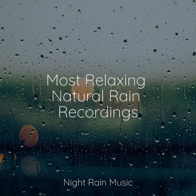 Most Relaxing Natural Rain Recordings