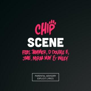 Chip tidal stopboris Gallery