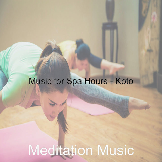 Music for Spa Hours - Koto