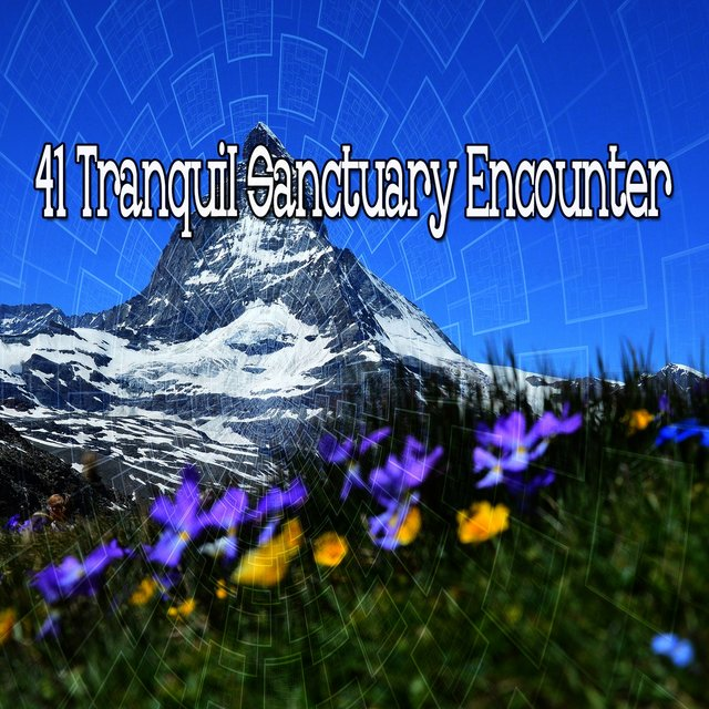41 Tranquil Sanctuary Encounter