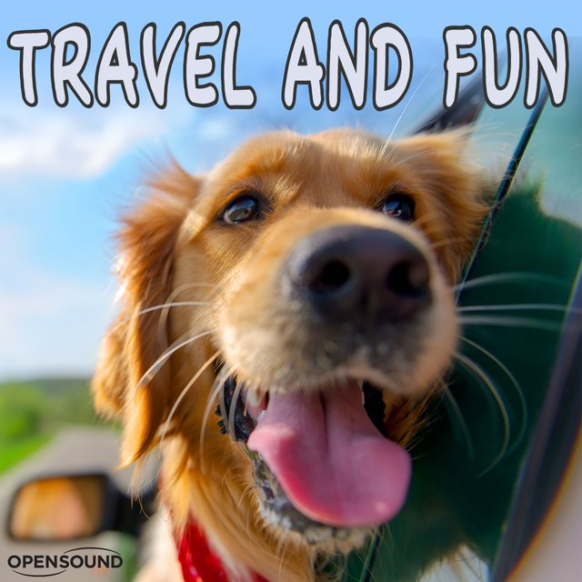 Travel and Fun