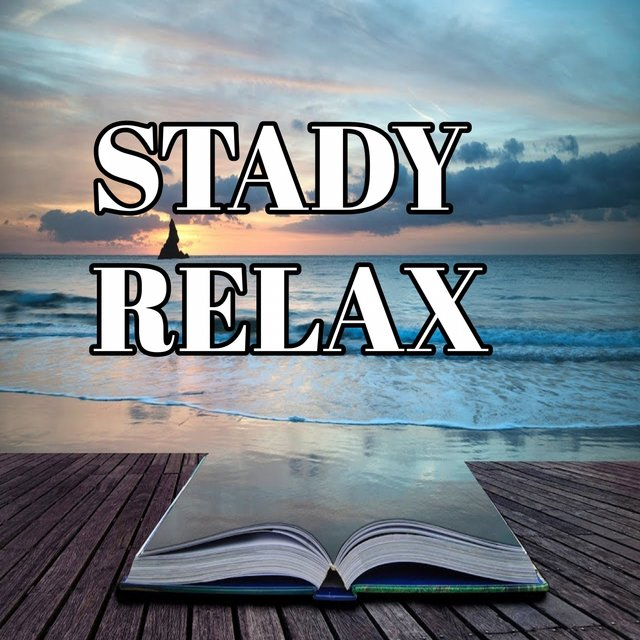 Stady Relax