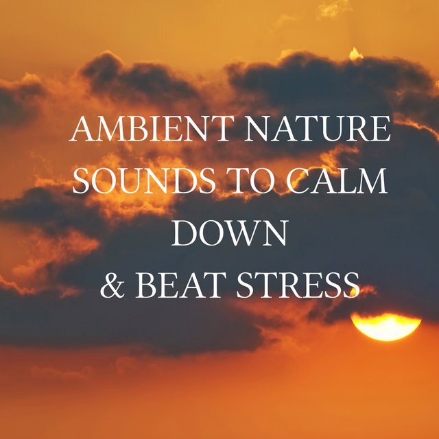 Ambient Nature Sounds to Calm Down & Beat Stress