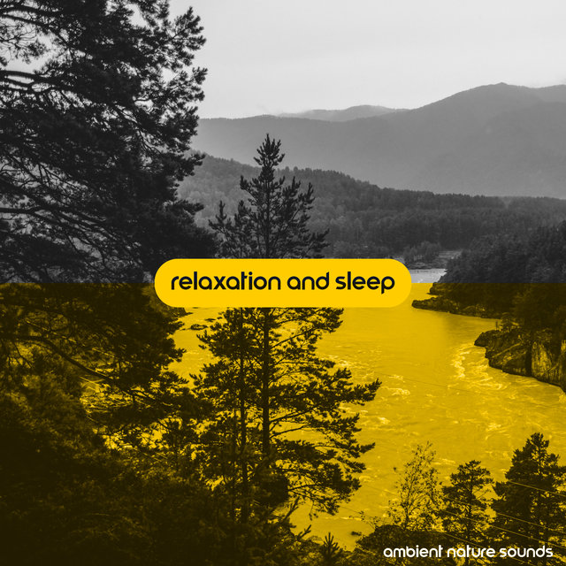 Relaxation and Sleep: Ambient Nature Sounds