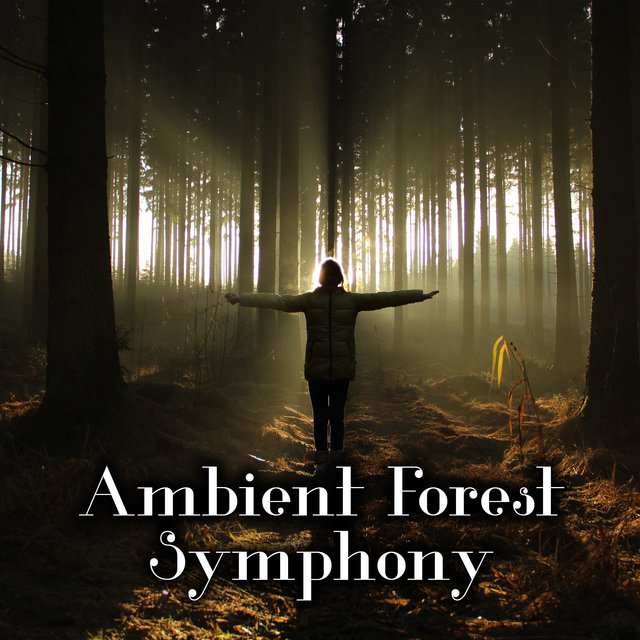 Ambient Forest Symphony – Nature Sounds Collection for Deep Relaxation, Sleep, Rest, Meditation, Body, Mind & Soul, Total Comfort, Inner Bliss, Morning Breeze