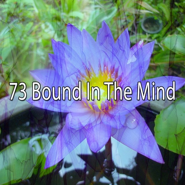 73 Bound in the Mind