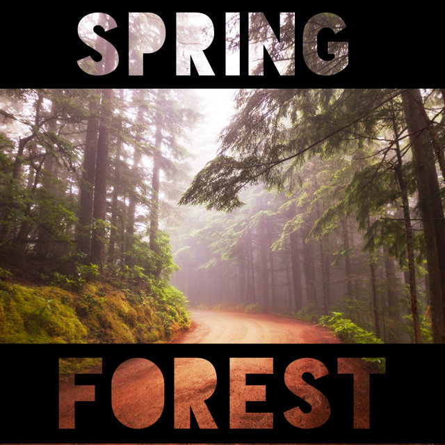 Spring Forest - Nature Sounds, Deep Relaxation, Healing Therapy Music