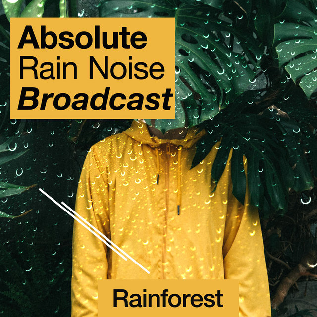 Absolute Rain Noise Broadcast