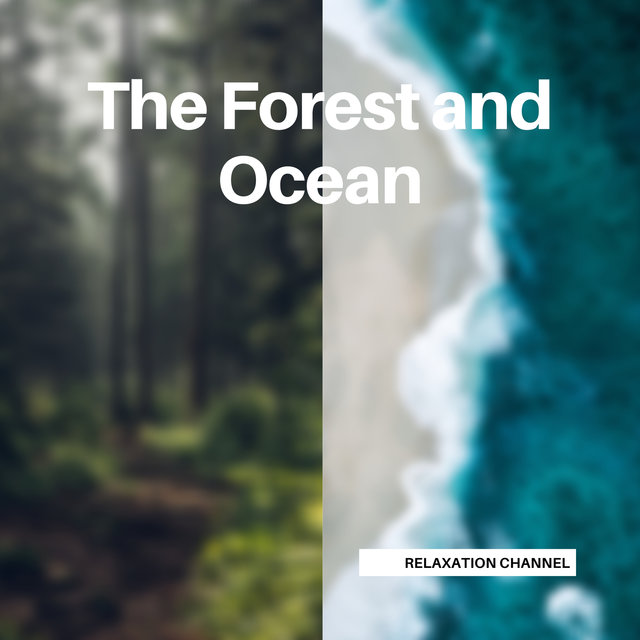 The Forest and Ocean