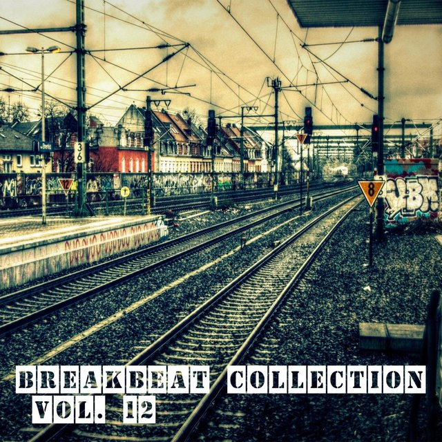 Breakbeat Collection Vol. 12