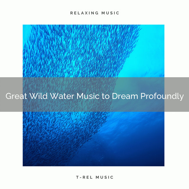 2020 Best: Great Wild Water Music to Dream Profoundly