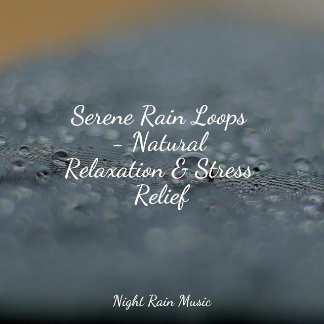 Serene Rain Loops - Natural Relaxation & Stress Relief