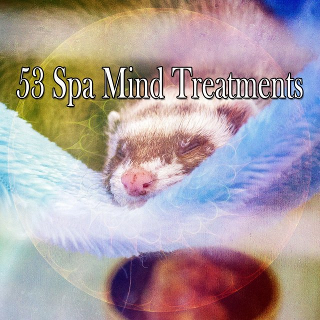 53 Spa Mind Treatments