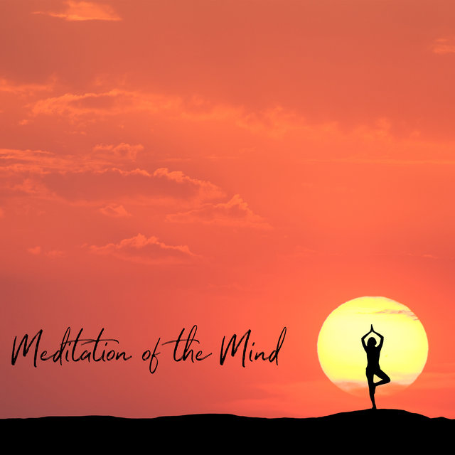 Meditation of the Mind -Deeply Calming, Reducing Negative Thoughts and Mind Cleansing Meditation