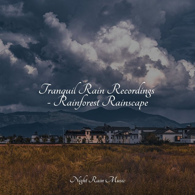 Tranquil Rain Recordings - Rainforest Rainscape