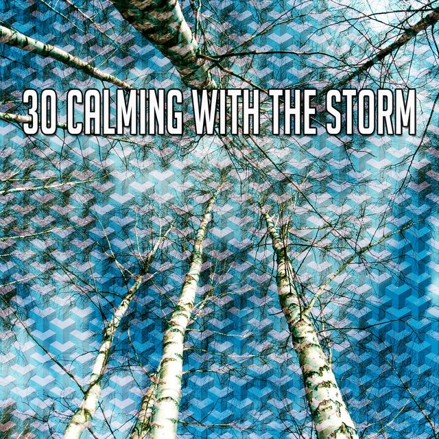 30 Calming with the Storm