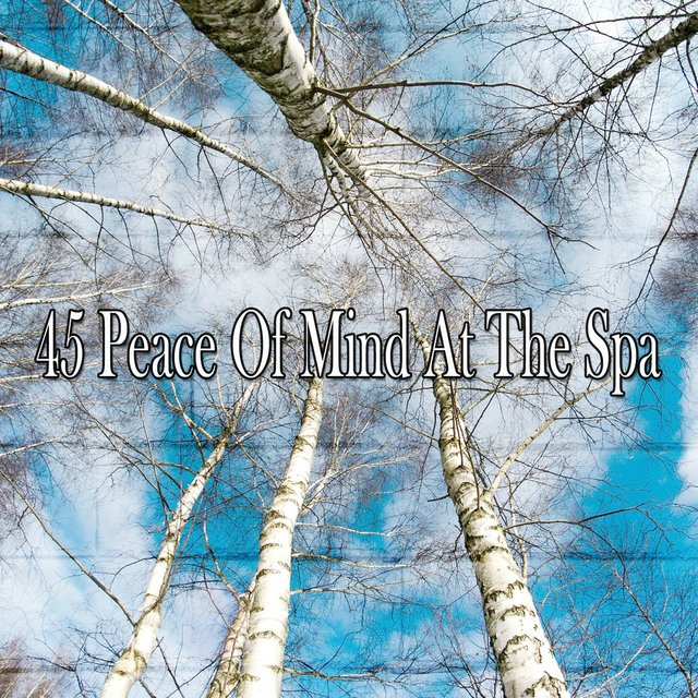 45 Peace of Mind at the Spa