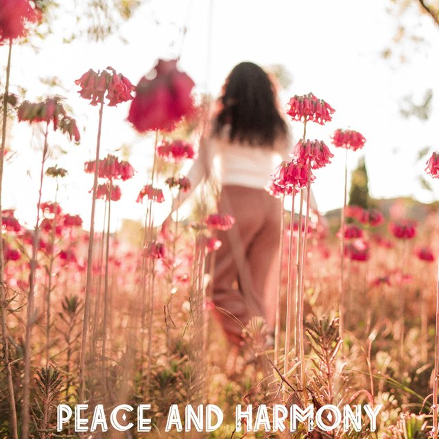 Peace and Harmony